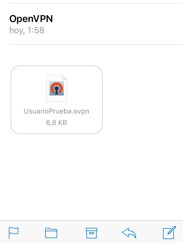 OpenVPN ios 1